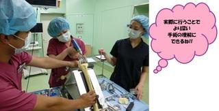 nurse_blog_150714_02.jpg